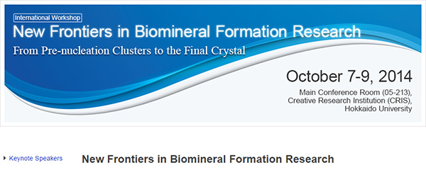 New Frontiers in Biomineral Formation Research